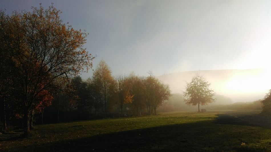 Misty Light And Shadow Wales Autumn Colours Colours Of Autumn