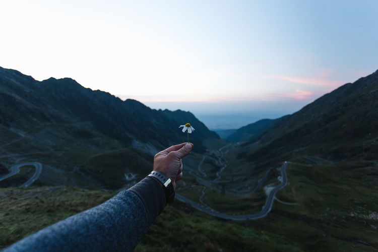 Cropped hand of man holding flower on mountain against sky during sunrise