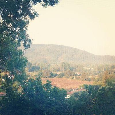 Muğla sabahı... günaydınlar... Green Mugla Sabah Gunaydin Goodmorning Valley Nature