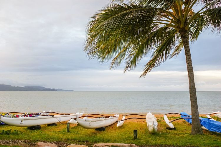 Water Beach Sea Sky Nature Scenics Tree Sand Tranquility Horizon Over Water Grass Palm Tree Canoes Vacations Holiday Townsville, Queensland.