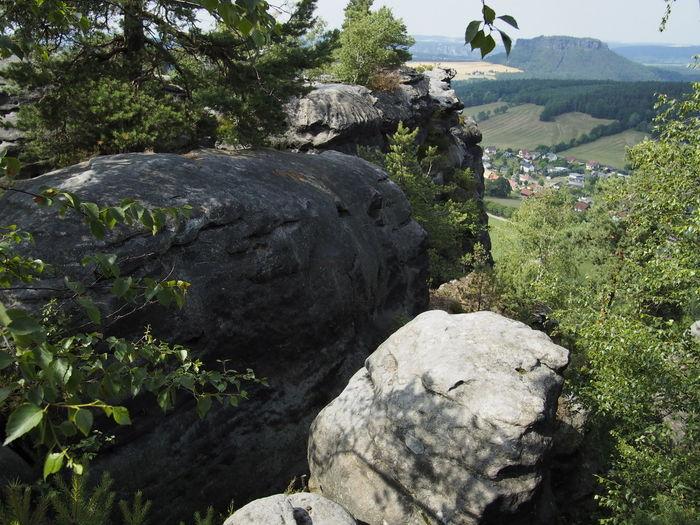 Sächsische