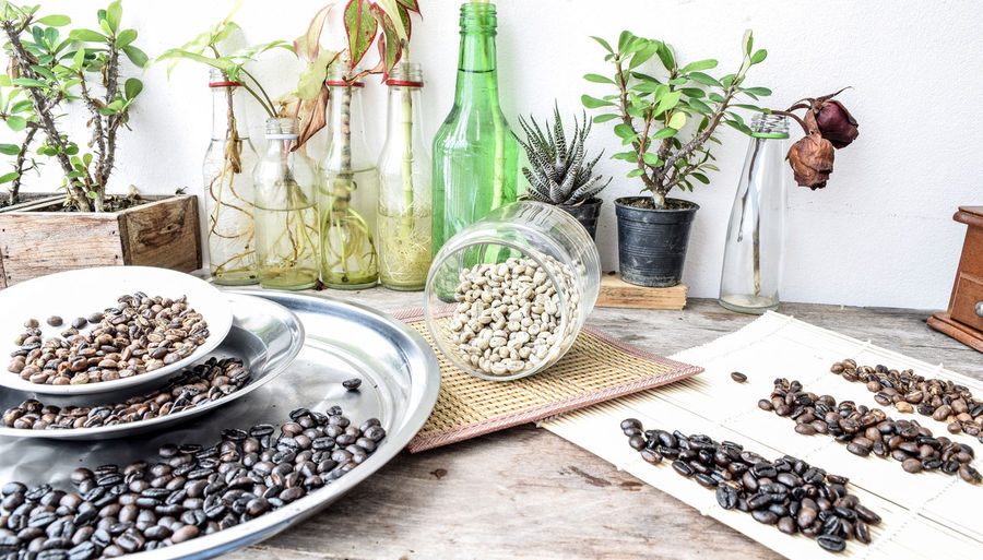 Choice Container Day Food Food And Drink Freshness Growth High Angle View Houseplant Indoors  Large Group Of Objects Leaf Nature No People Plant Plant Part Potted Plant Still Life Table Variation