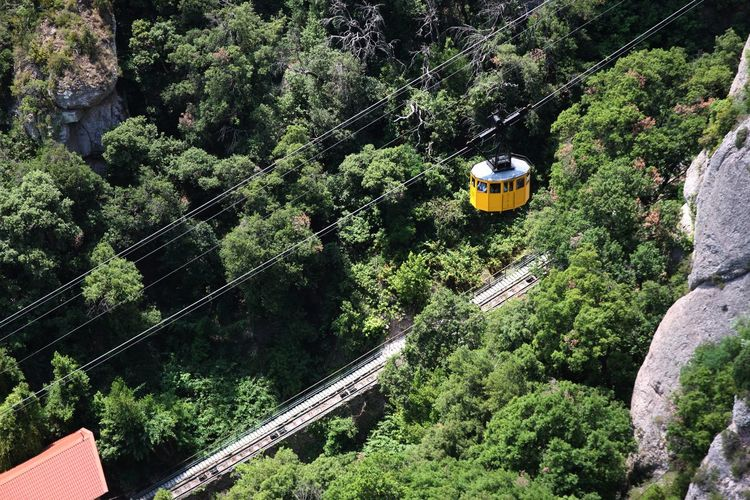 High angle view of overhead cable car amidst trees