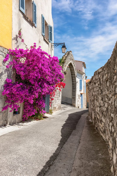 Street in Provence Architecture Blue Sky Bougainvillea Bougainvillea Flower Building Exterior Built Structure City Day Flower Forward Mediterranean  Nature No People Old Town Outdoors Pesspective Pro Purple Purple Bougainvillea Purple Flower Sky South Africa Stone Material Street Tourist