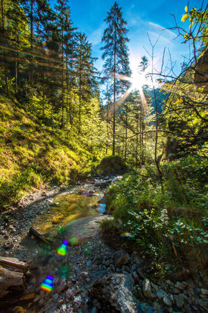 Beauty In Nature Blue Day Green Color Growth Idyllic Landscape Lens Flare Mountain Nature No People Non-urban Scene Outdoors Plant Rock - Object Scenics Sky Stream Sunbeam Sunlight Sunny Tranquil Scene Tranquility Tree Water