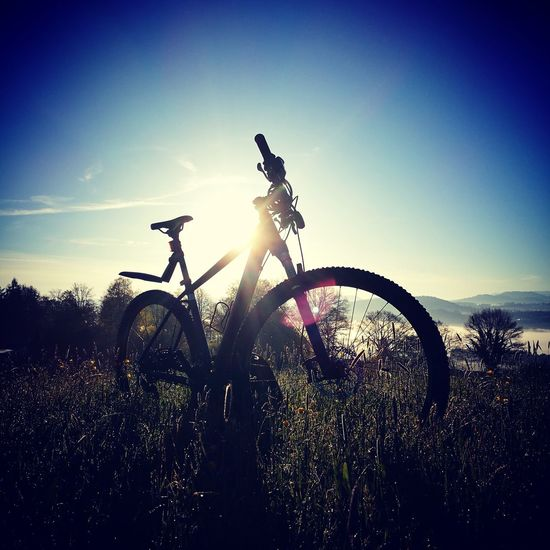 Bicycle Nature Sunlight Sky Outdoors Westallgäu Mountain Bike