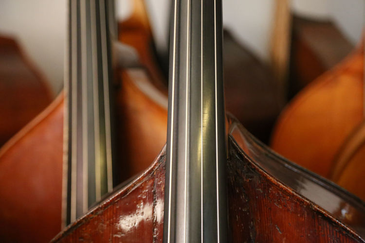 Lots of double basses at a luthier's