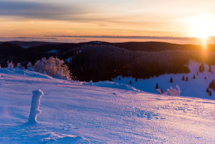 Beautiful winter condition in snowy Black Forest, Germany. What can you ask for? Germany Black Forest Winter Sunrise Nature Skiing Skitouring Berge Schwarzwald Baden-Württemberg  Mittelgebirge Mountain Sun Epic Outdoors Winter Sports Sport Sky Sonnenaufgang Dusk Warm Colors Cold Temperature Romantic Sky Panorama Hiking