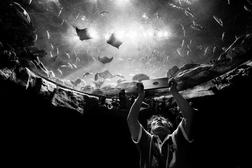The Street Photographer - 2017 EyeEm Awards Eyeem Philippines Live For The Story Street Photographer Street Photography Streetphotography EyeEm Best Shots - Black + White Black And White The Photojournalist - 2017 EyeEm Awards TheWeekOnEyeEM The Week On Eyem EyeEm Best Shots People Real People Street Life Black & White EyeEmBestPics EyeEm Blackandwhite