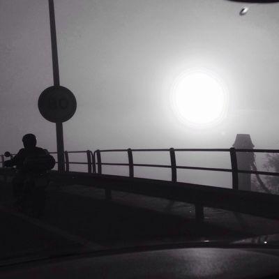 Amanecer y niebla Blackandwhite Bw_collection Streetphoto_bw Black And White On The Road Sevilla movilgrafias