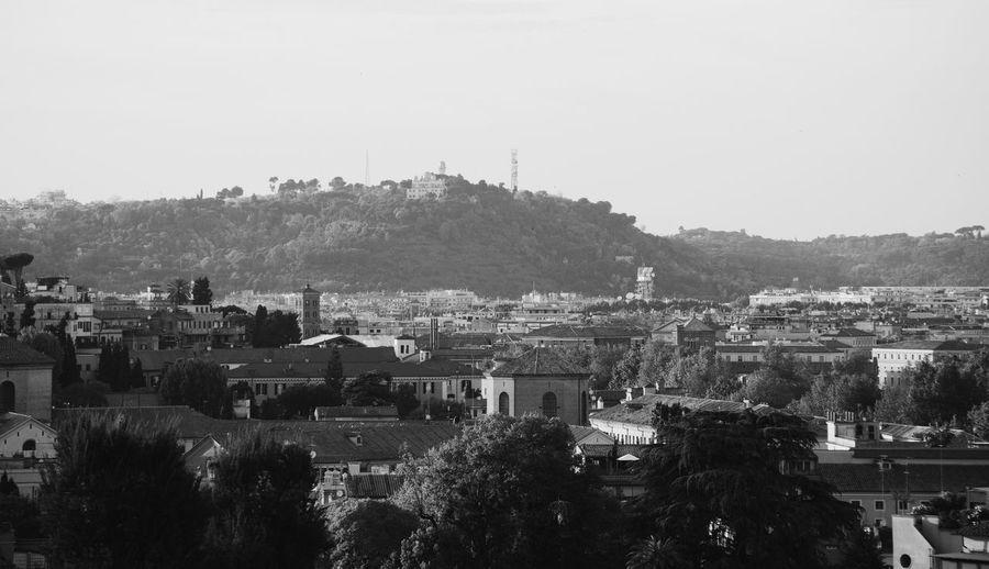Zodiaco's hill // VSCO Vscocam Blackandwhite Black & White Monochrome Nikon Nikonphotography Nikon D5200 Landscape Landscape_Collection