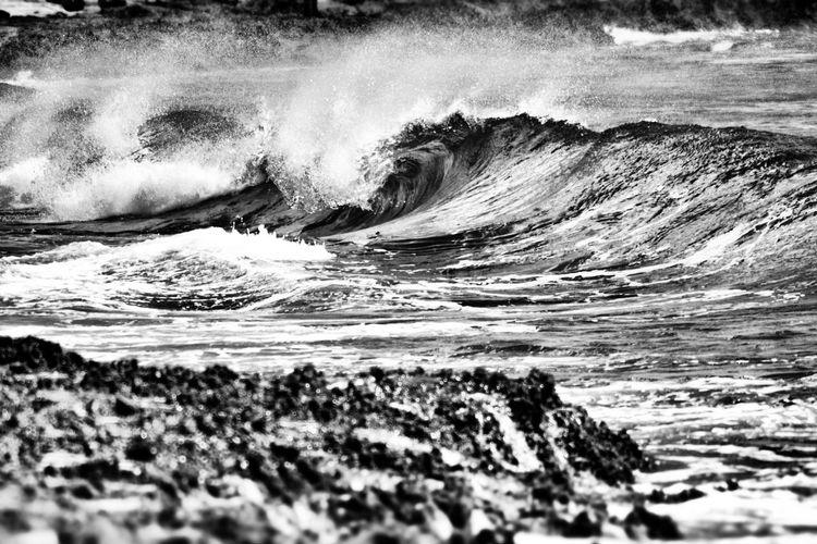 Shades Of Grey Hawaiilife EyeEm Best Shots - Black + White Ocean Photography Natural Beauty EyeEm Best Shots Enjoying Life Outdoor Beach Photography Eye4photography  Hello World