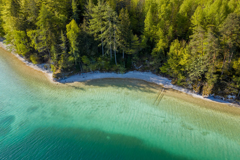 Aerial image of beautiful natural beach of lake fuschlsee, salzburg, austria