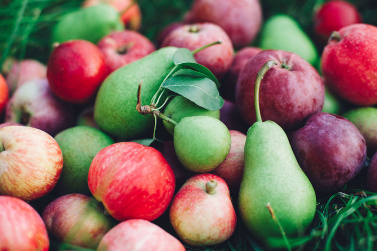 Abundance Apple - Fruit Backgrounds Close-up Day Food Food And Drink Freshness Fruit Full Frame Green Color Healthy Eating Large Group Of Objects Leaf No People Plant Part Red Ripe Selective Focus Still Life Wellbeing