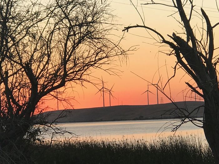 California Delta Sunset California Delta Wind Energy Wind Power Wind Turbines Windmill Isolation California Delta Sunset Sky Beauty In Nature Plant Tree Tranquility Scenics - Nature Tranquil Scene Bare Tree Silhouette No People Nature Water Land Outdoors Orange Color Branch