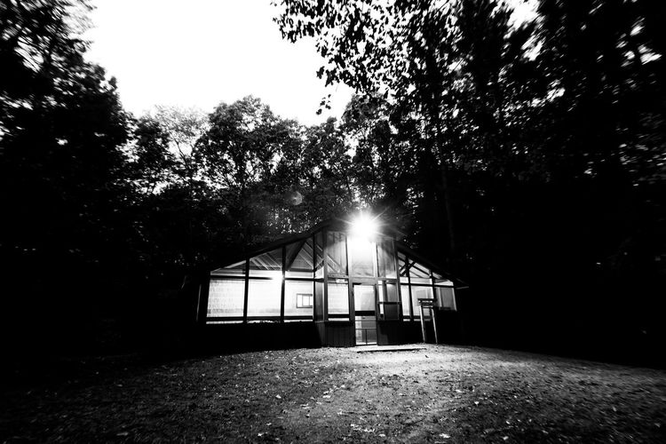 Cabin by the woods Architecture B&w Building Exterior Built Structure Day Lens Flare Nature No People Outdoors Sky Sun Sunbeam Sunlight Tree