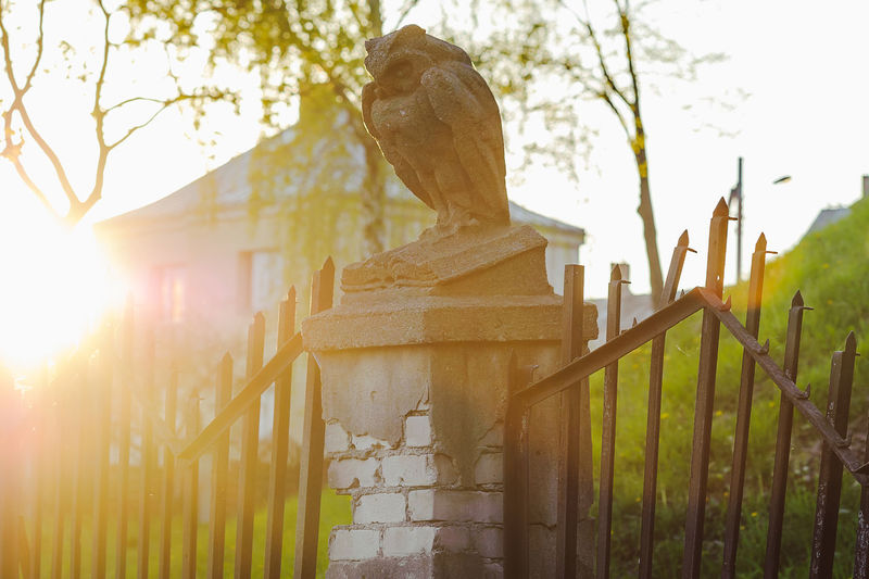 Owl Animal Themes Architecture Building Exterior Built Structure Close-up Day Mammal Nature No People Old Outdoors Owl Sculpture Sky Statue Stone Stone Owl Sunset