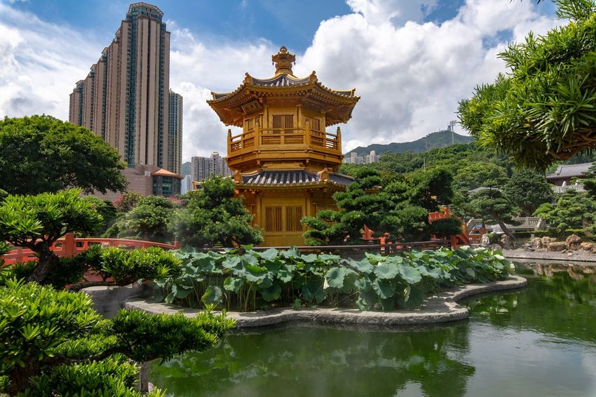 Nan Lian Garden Architecture to Perfection and Modern Architecture Built Structure Plant Architecture Building Exterior Tree Water Building Cloud - Sky Nature Lake Sky Belief Religion Place Of Worship Sculpture No People Spirituality Outdoors Ornate The Architect - 2018 EyeEm Awards