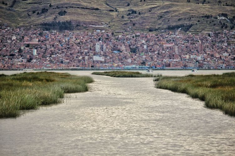 view of Puno. Partener Selection Titicaca Lake Cityscape Lake Grass Landscape Tranquility Calm