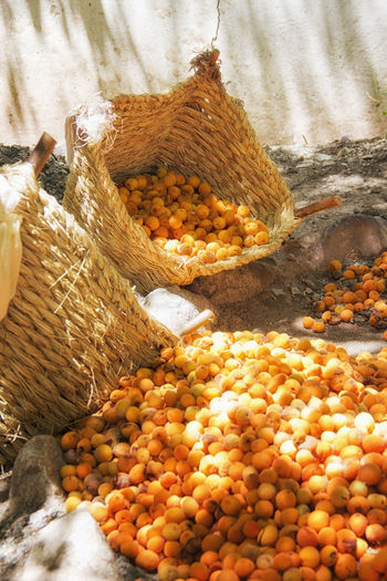 Apricots Basket Close-up Day Dried Fruit EyeEmNewHere Food Food And Drink Freshness Fruit Healthy Eating Heap High Angle View India Ladakh Large Group Of Objects Market No People Nut - Food Outdoors Sun Sunlight
