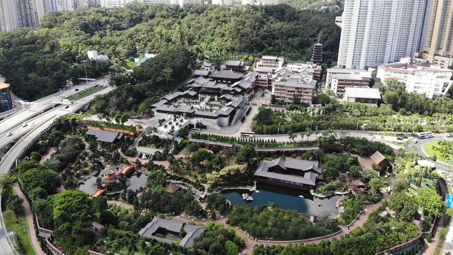 Building High Angle View Built Structure Plant City Tree Building Exterior Architecture Mode Of Transportation Motor Vehicle No People Transportation Growth Outdoors Garden Chinese Garden Chi Lin Nunnery Dronephotography Temple Landscape Lake Cityscape