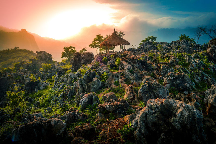 sunrise Sunrise Landscape Travel Destinations Plant Cloud - Sky Outdoors Field Sky