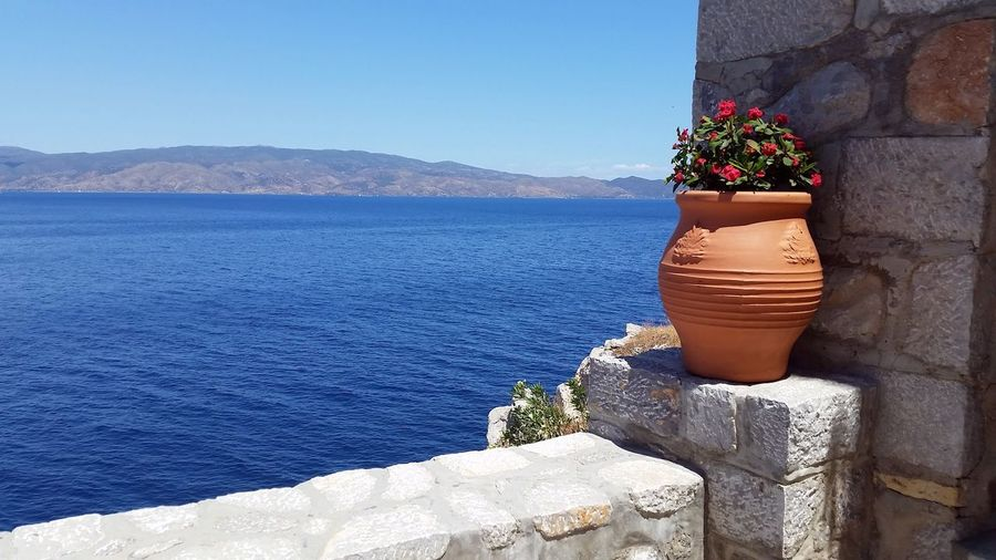 Flower pot on retaining wall by river against clear blue sky