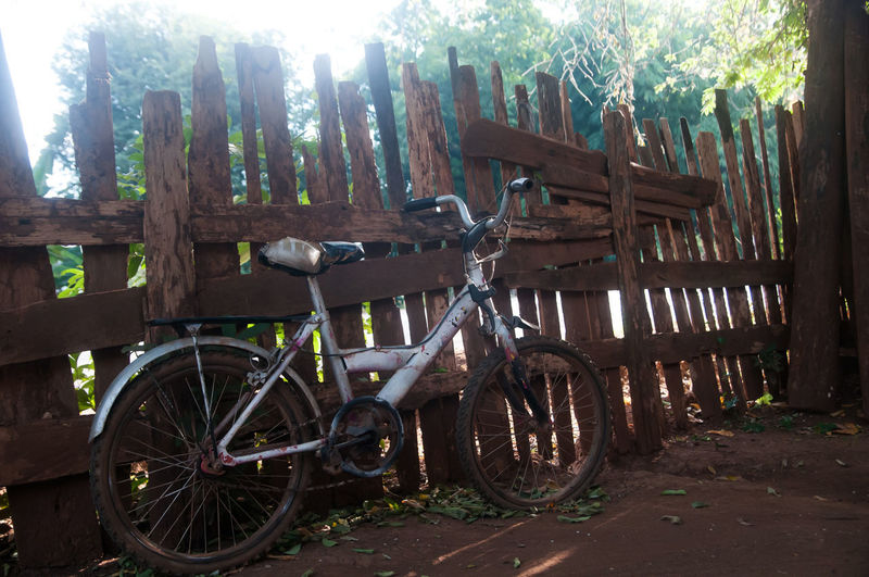 Classic Bike Classic Bikes Tree Transportation Day Wood - Material Plant No People Nature Wheel Outdoors Land Fence Mode Of Transportation Cart Barrier Boundary Forest Land Vehicle Wood Tree Trunk Trunk Wagon Wheel Classic Bike Race
