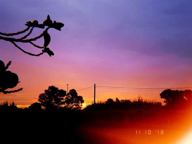 Sun Sunshine Beauty Nature Photography Rosesky Nature Beauty In Nature Clouds Clouds And Sky Girl Light Lights Sunlight Sunrise Sunset Silhouette Tree City Sky Spread Wings Flying Flight