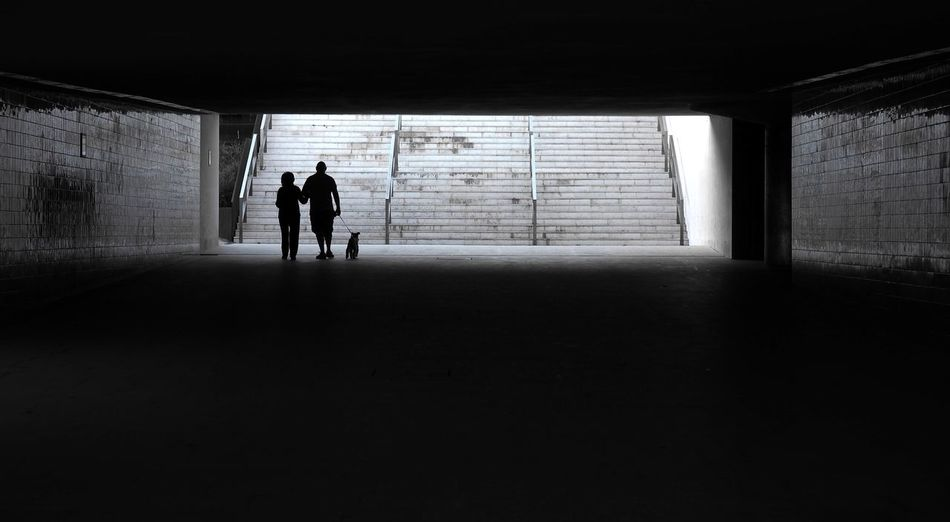 Silhouette Man And Woman Walking With Dog In Tunnel
