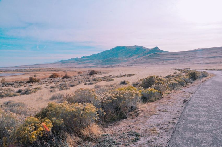 Perspectives On Nature EyeEm Selects Landscape Hills Salt Lake City Utah Nature Nature_collection Nature Lover