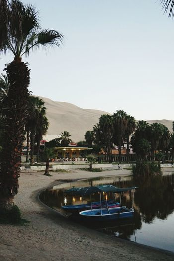 Restaurant in desert with small oasis. so romantic place. but I was alone :( Desert Oasis Sand Peru Travel Backpacker First Eyeem Photo