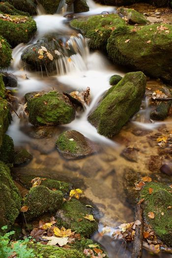 Nature Scenics Long Exposure Waterfall Beauty In Nature Water Freshness No People Environment Flowing Water Tranquility Forest Motion Outdoors Day Rapid Landscape Tree Close-up Black Forest Bühlertal Schwarzwald Germany Autumn Autumn Colors Long Goodbye
