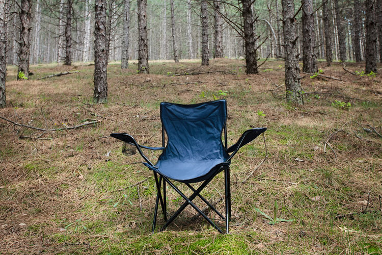 empty chair in the forest Beautiful Beauty In Nature Branch Chair Conifer  Coniferous Day Empty Environment Folding Chair Forest Grass Landscape Nature No People Outdoors Park Peaceful Relaxation Scene Seat Solitude Thick Tranquility Tree