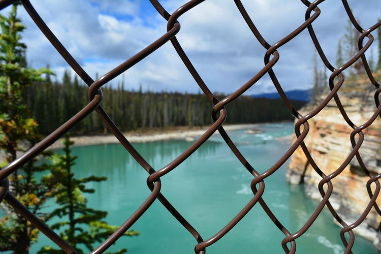 Jasper National Park Jasper Icefields Parkway Athabasca Falls Athabasca River Canada British Columbia Alberta Fence Protection Focus On Foreground Boundary Barrier Chainlink Fence Day Metal No People Nature Close-up Water Cloud - Sky Sky Tree Pattern Outdoors
