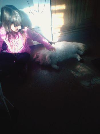 :) Cat First Eyeem Photo