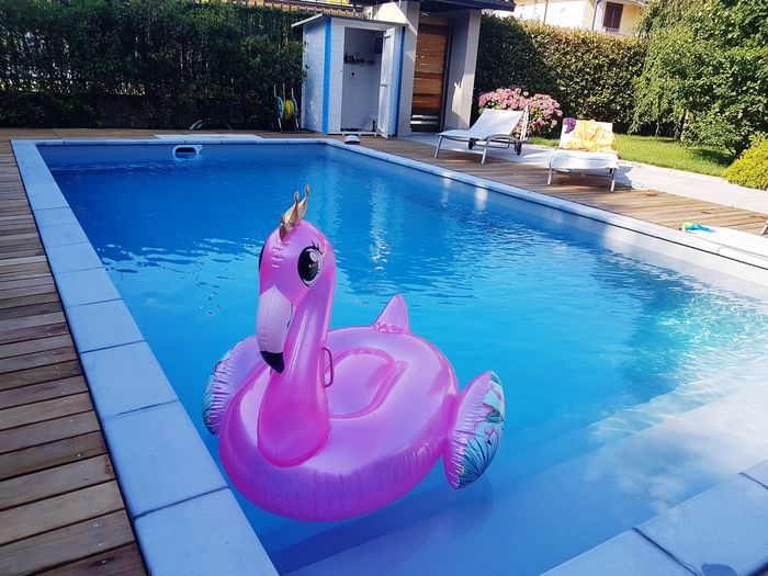Swimming Pool Pink Water Swimming Pool Flamingo Blue Pink Color Swimming High Angle View Inflatable  Pool Party