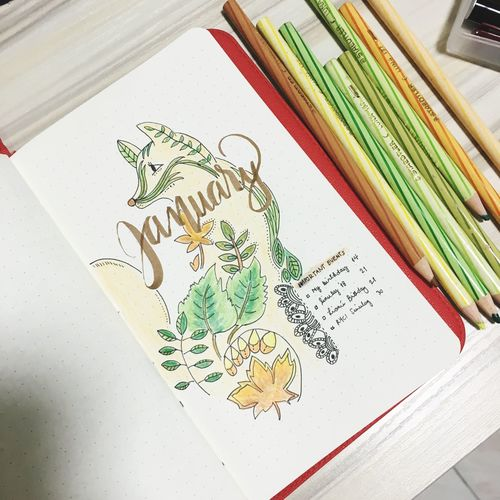 Indoors  Book No People Paper Education Close-up White Background Day Bulletjournal