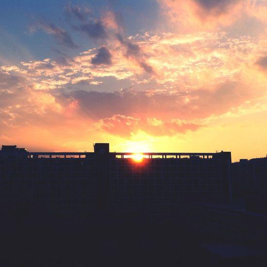 Sunset Sun_collection