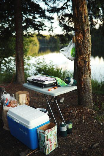camp camp camp