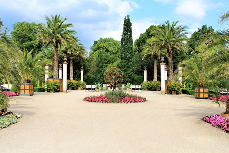An image of a palm garden - botanical, park Bench Botanical Garden Jungle Nature Palm Palm Tree Palms Park Subtropical Tree Trees Tropical