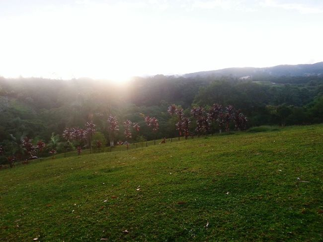 Eu só quero a calmaria de um lugar que sopra o vento da paz... Pordosol :)