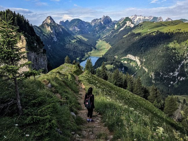 Hiking Rear View Landscape Nature Mountain Beauty In Nature Outdoors Green Color Real People Leisure Activity Day One Person Women Scenics Tree Grass Sky Adults Only People Adult