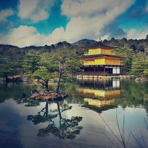 Ultimate Japan Kyoto Golden Pavilion  Showcase July