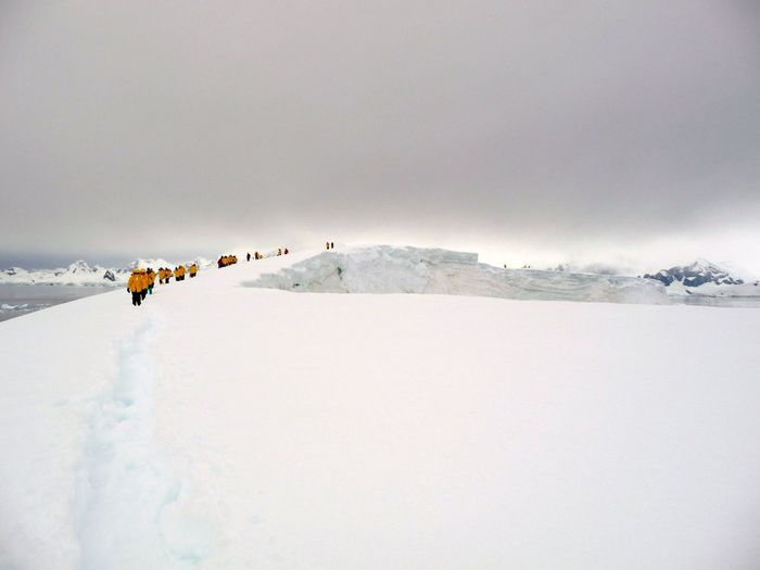 People walking in Antarctica Cold Ice Landscape Landscape_photography People Snow Walking Wilderness