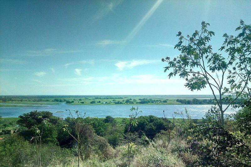 PantanalMS Pantanal Rio Paraguai Río Paraguay Corumba Sitio EyeEm Selects Mato Grosso Do Sul Ms Brasil Agua Lazer Hotel Water Sea Tree Beach Sky Horizon Over Water Grass Cloud - Sky Landscape
