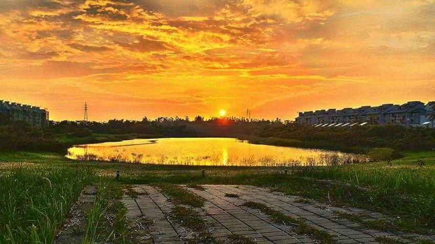 Lotus Lake 台南善化