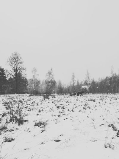 Mountains Karpacz VSCO EyeEm Best Shots EyeEm Best Shots - Black + White Poland Polska IPhoneography Streetphotography