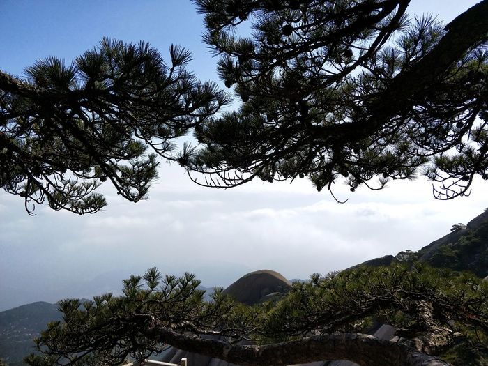 Tianzhu Mountain