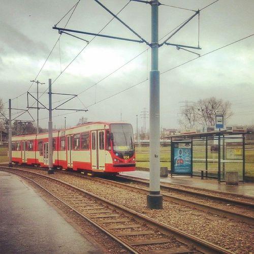 We Wrzeszczu deszczowo... My3miasto 3city Ilovegdn Gdansk_offcial tram tramwaj zkmgdansk remik fotomagik 3city trojmiasto wrzeszcz